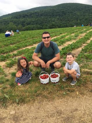 strawberry picking - Copy